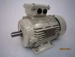 Teco 7.5kw 4 Pole 3 Phase D132M Frame IE2 Aluminium Motor