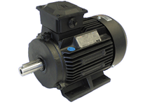 Electric Motors-3 PH 2 Pole